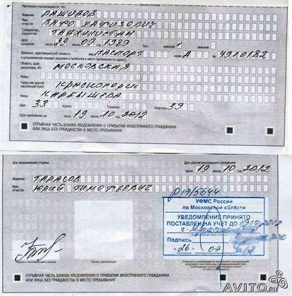 Регистрация в спб для граждан снг дано