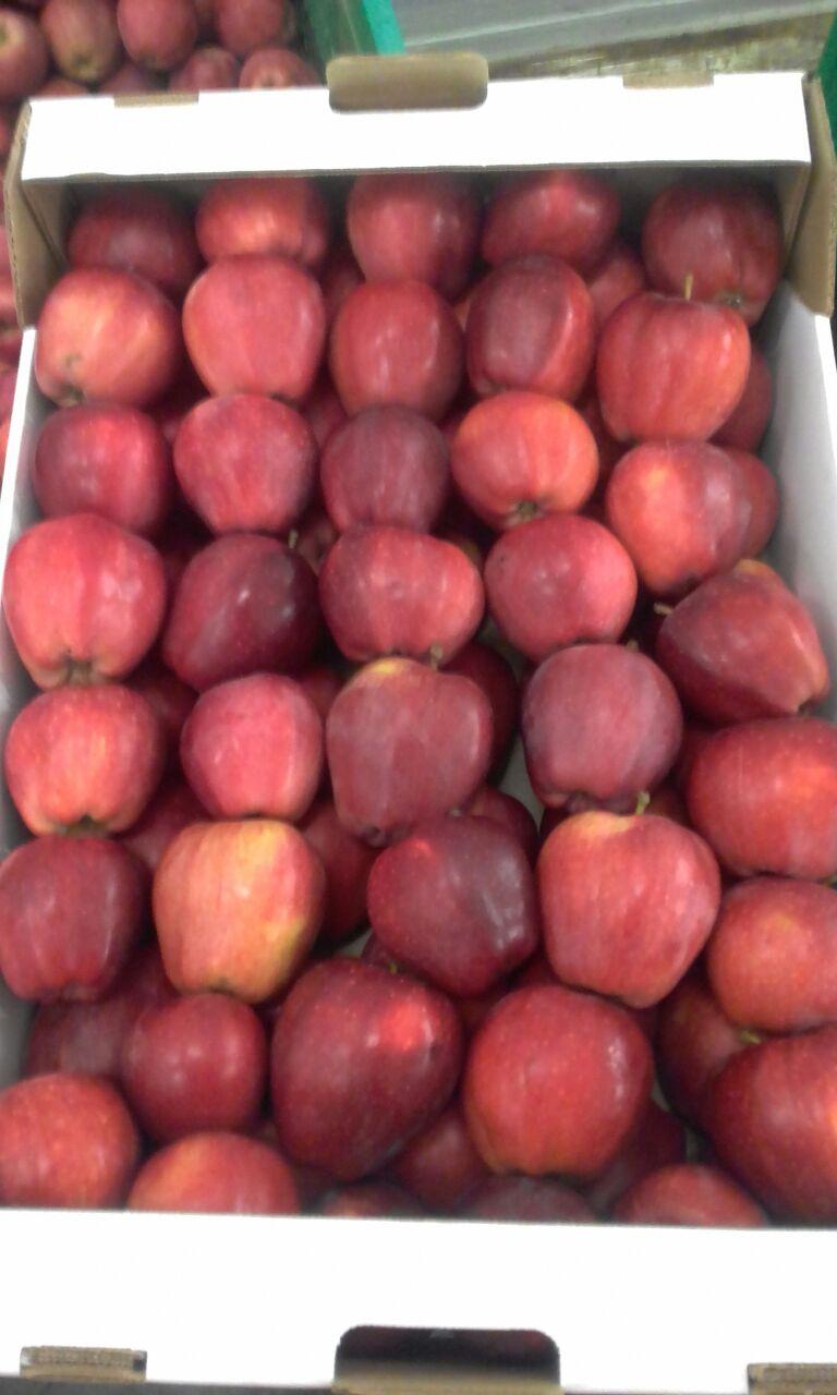 Яблоки оптом напрямую от производителя