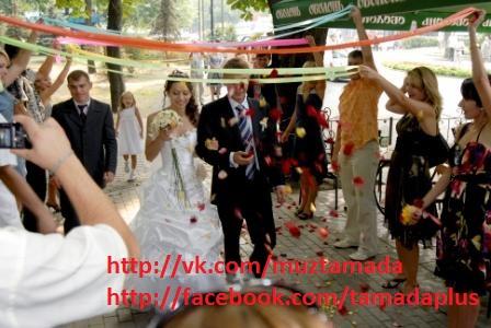 Карантин позаду - гайда одружуватись Тамада, д джей, жива музика